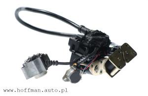 W pompach Delphi-Lucas bardzo często awarii ulegają elementy elektryczne